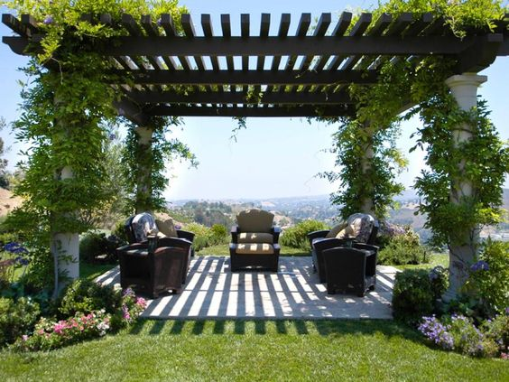 Greek style pergola with creeping plants