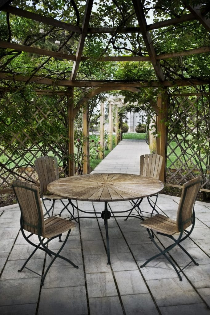 Pergola with creeping vines