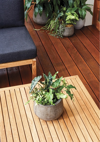 Water based deck stain